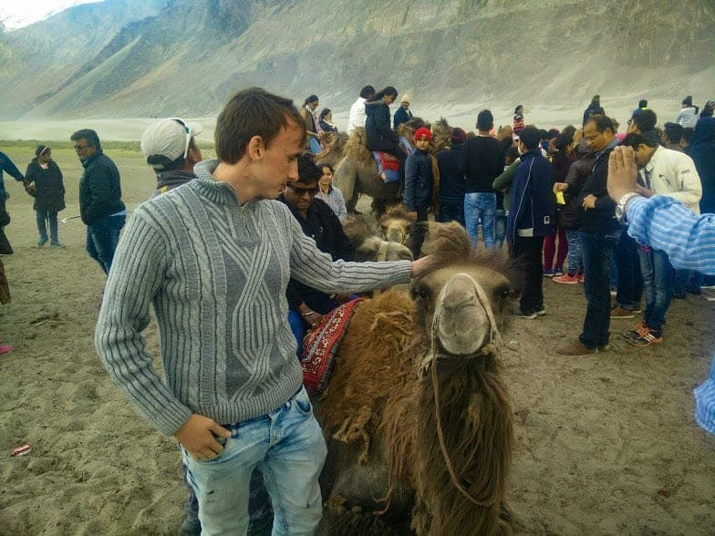 Kashmir travel stories: the Bactrian camel