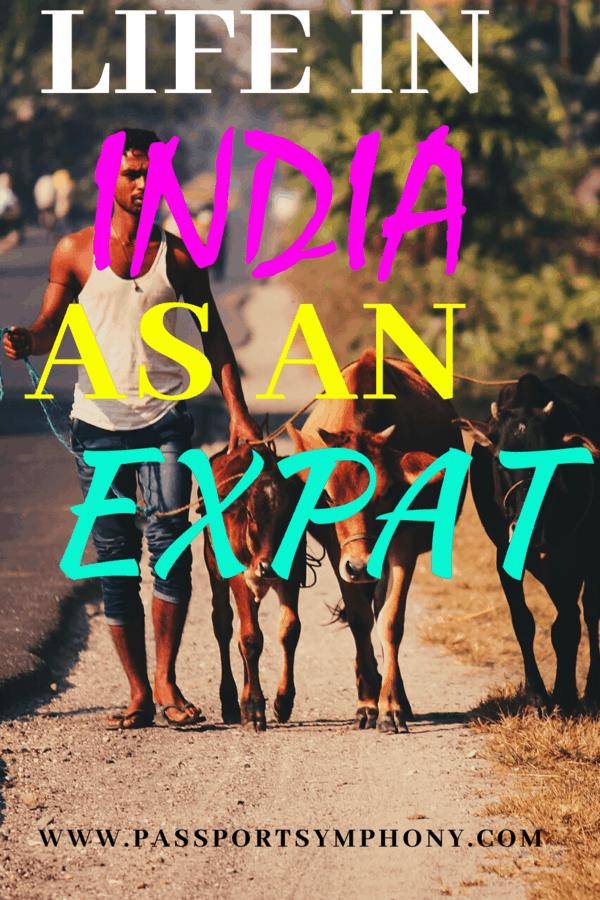 life in india expat