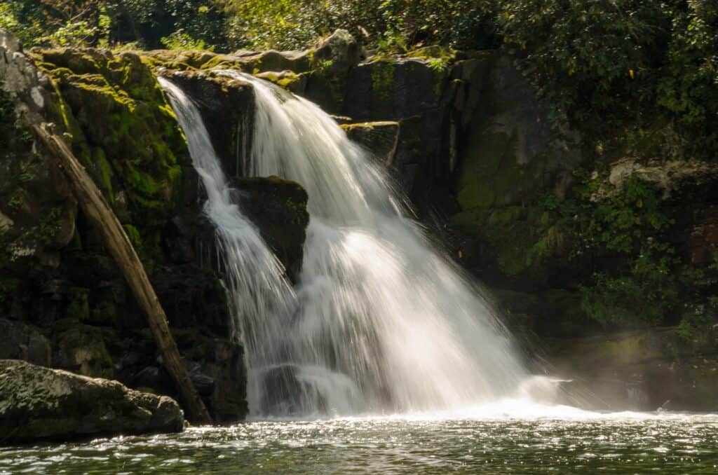 roaring fork motor nature trail tennessee