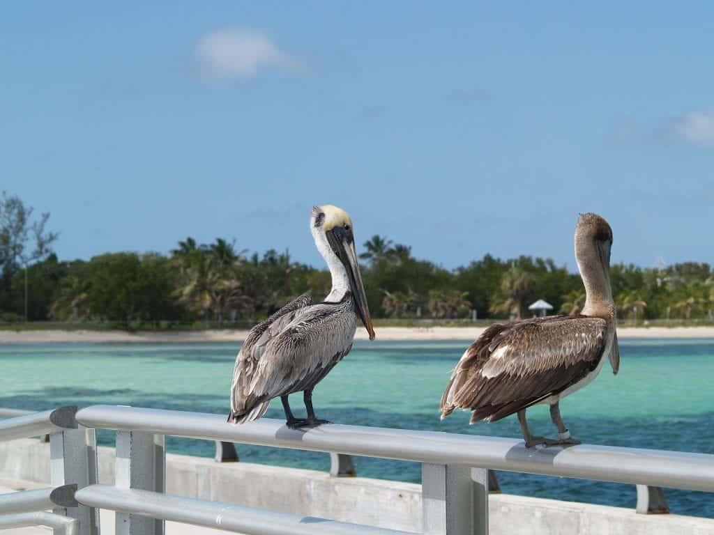 national parks near Key West