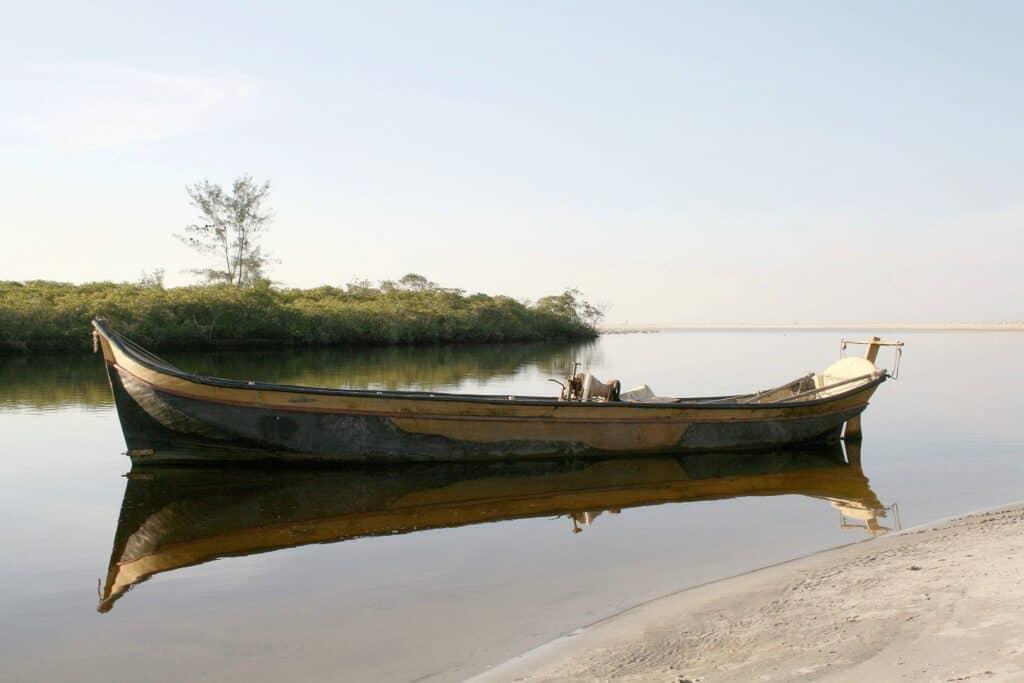 firefly boat ride