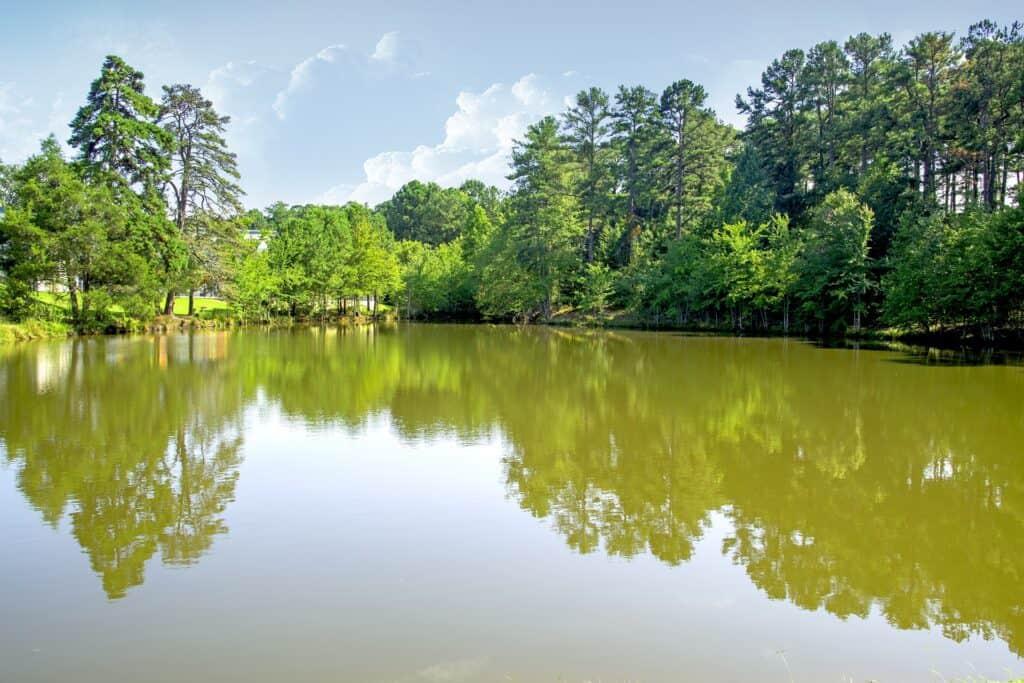lake claire atlanta