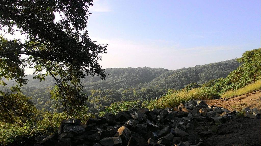 Sanja Gandhi National Park