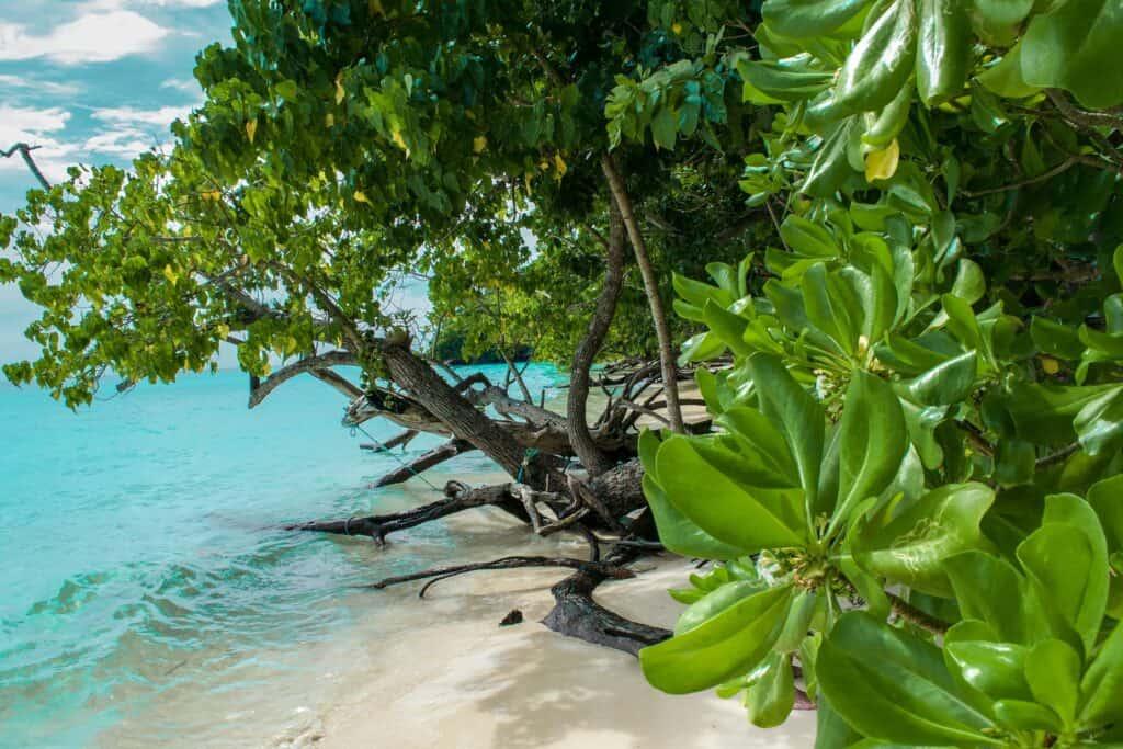 koh mak island hopping in thailand