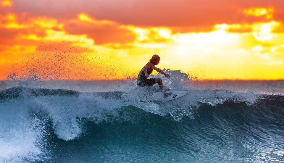 surfing travel jobs