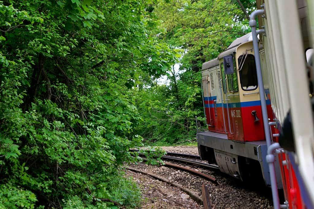 Gyermekvasút children railway hungary