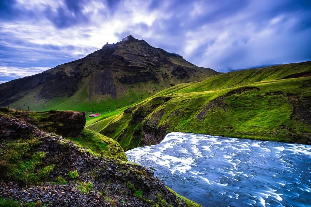 iceland meadow