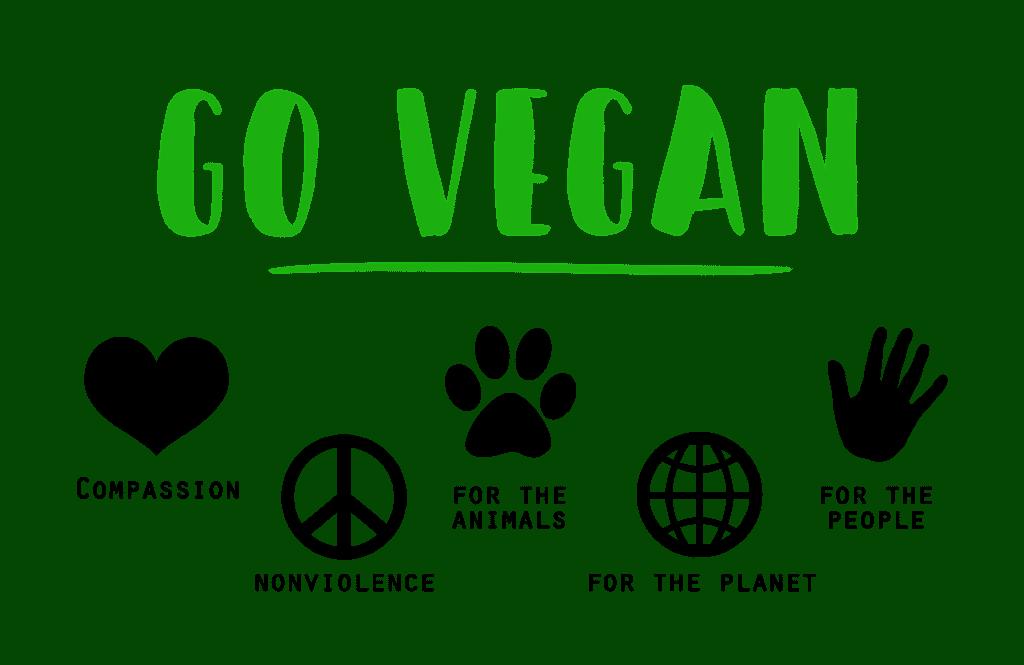 vegan 1343429 1920