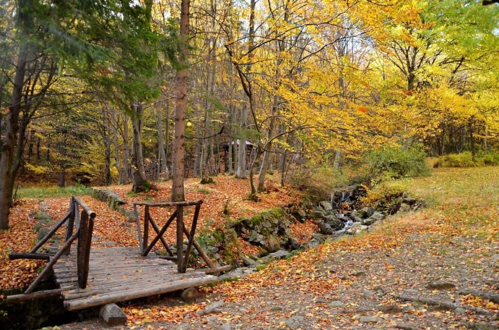 Avcıkoru Nature Park