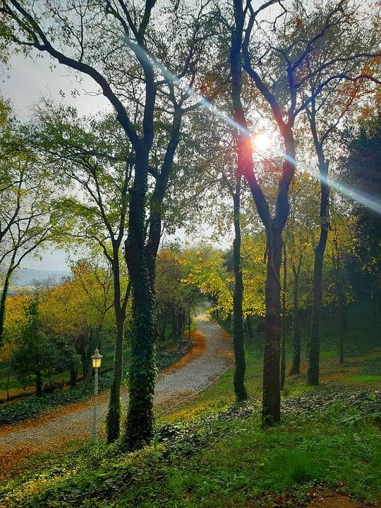 hidden gems in istanbul belgrad forest