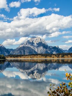 jackson hole Cheap Honeymoon Destinations in the US